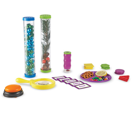 Primary Five Senses Activity Set